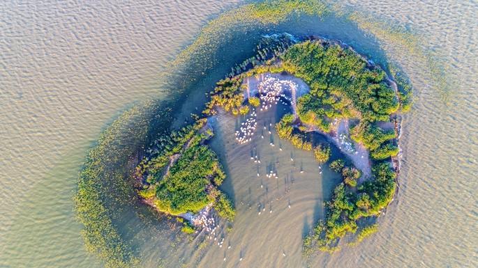 Дельта Дуная, единственный в мире природный рай