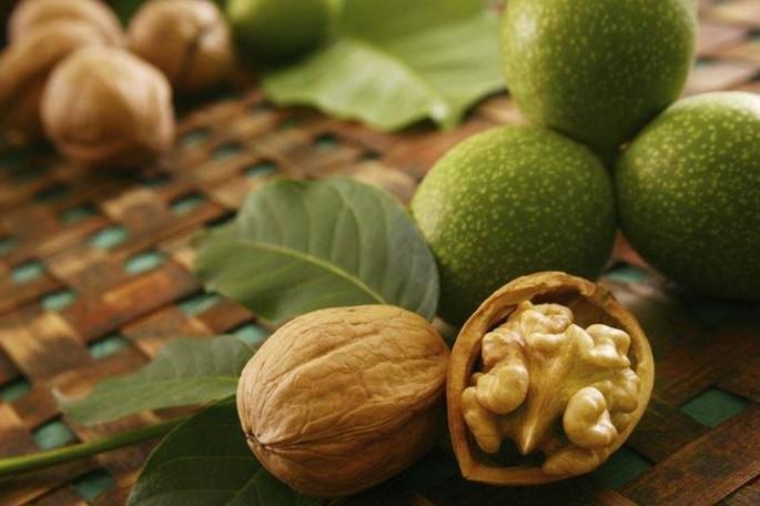 Ореховый сад: в Молдове самый большой фруктовый сад в Европе