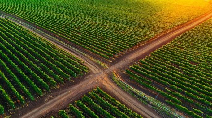 La Strada del Vino in Moldova